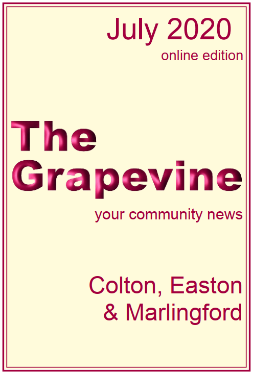 The Grapevine July 2020