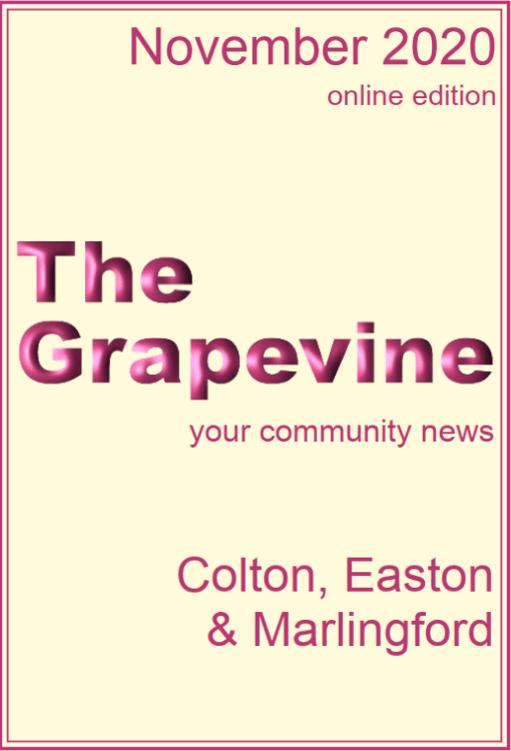 Grapevine November 2020